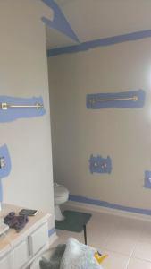 master bathroom paint before
